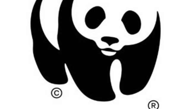 Il logo che rappresenta da sempre il Wwf