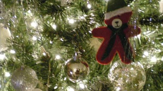 Duomo, ecco l'albero per le Feste targato Pandora