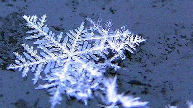 Fiocco di neve generica