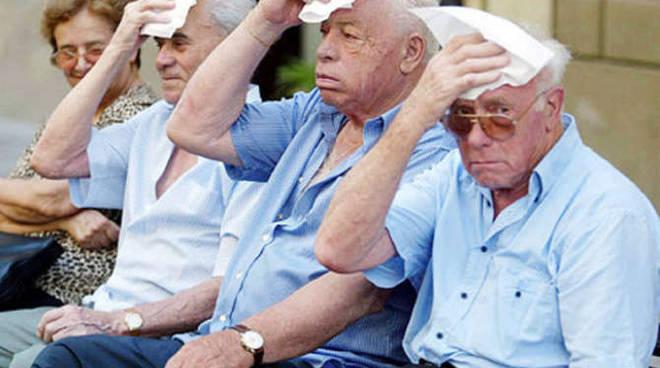 Caldo anziani generica