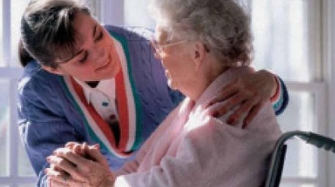 badante assistente familiare generica
