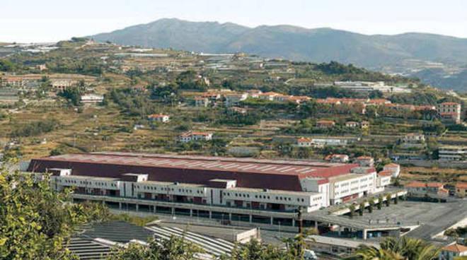 Il Mercato dei Fiori di Valle Armea