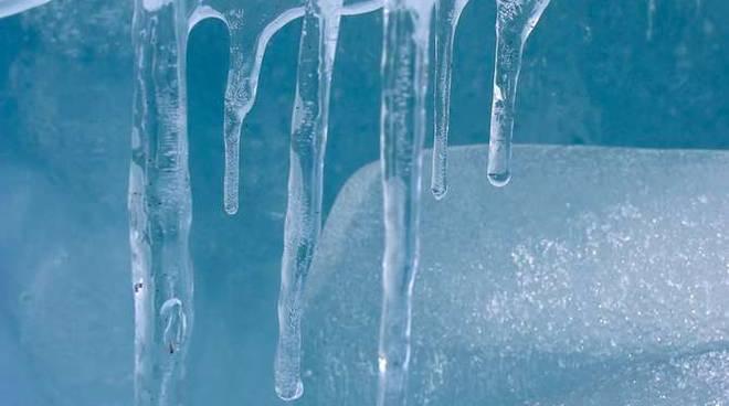 Gelo freddo generica