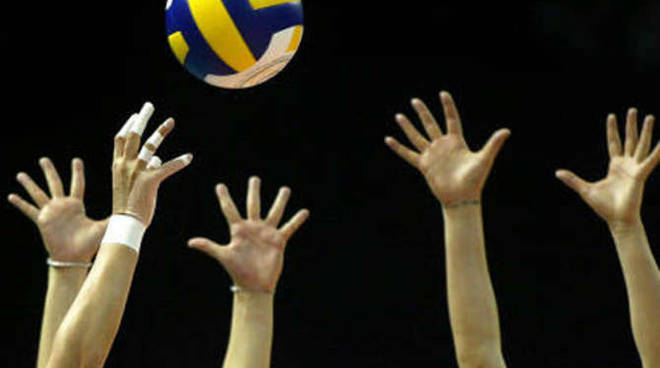 Pallavolo Volley generica