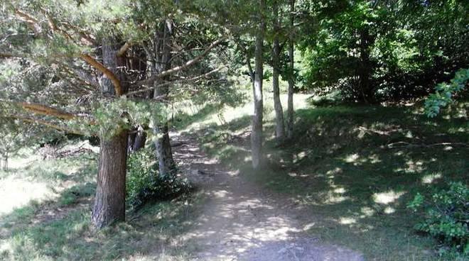 Sentiero generica Parco Alpi Liguri