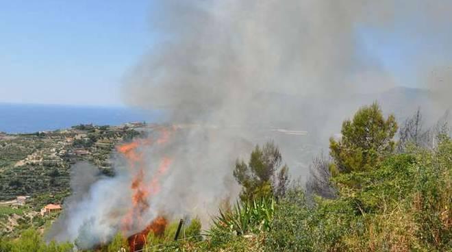 Incendio camion tir bosco Coldirodi Montenero
