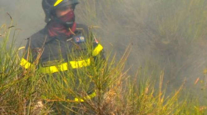 Vigile del fuoco incendio boschivo generica