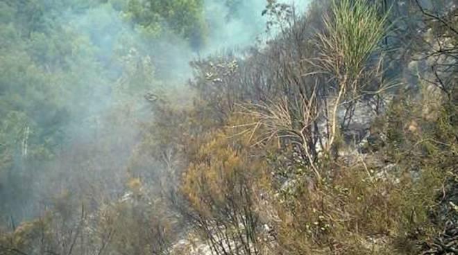 Incendio Località Verandi generica bosco