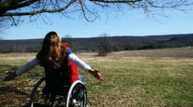 handicap generica