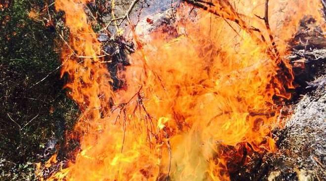 Incendio alle spalle di roquebrune a poca distanza dal for Distanza siepe dal confine