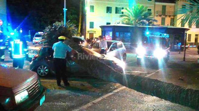 palma caduta bordighera notturna 115 polizia locale