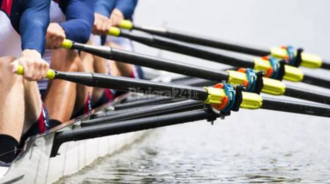 Row Activity