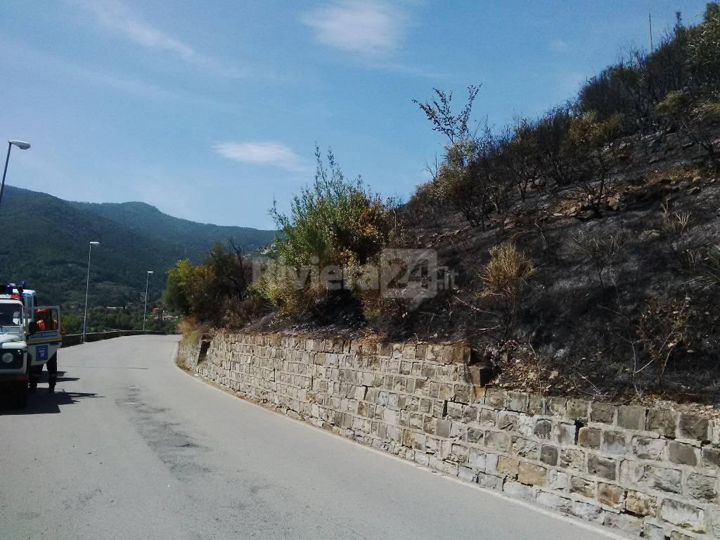 Brucia ancora la collina di san giacomo nuovo intervento for Planimetrie del paese di collina