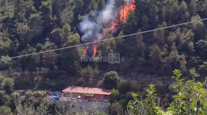L'incendio a Camporosso negli scatti di Mauro Cerbai