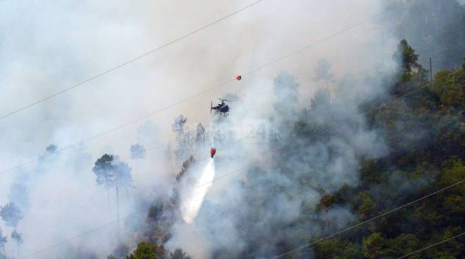Sanremo, incendio boschivo a Borello 2015