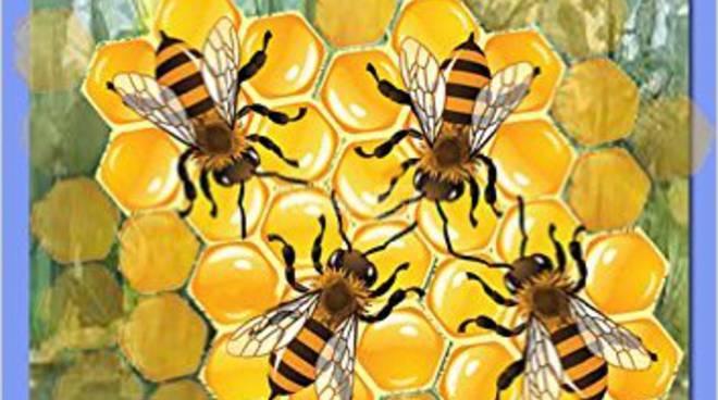 andrea eremita libro le api del lago brezzacarezza