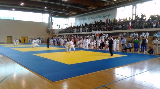 judo memorial todde