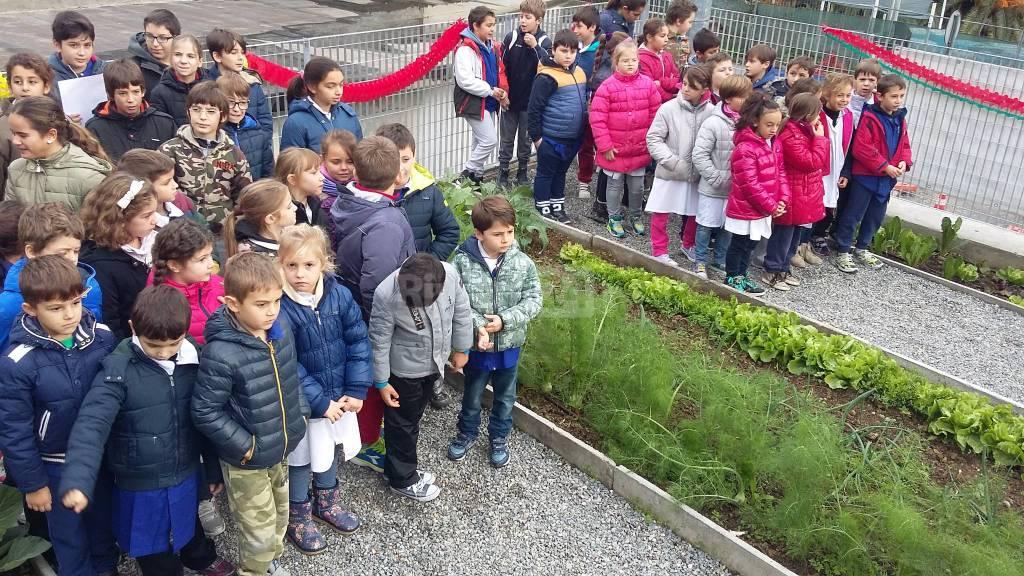 Inaugurazione orto delle scuole di Latte novembre 2015 nesci campagna costanza