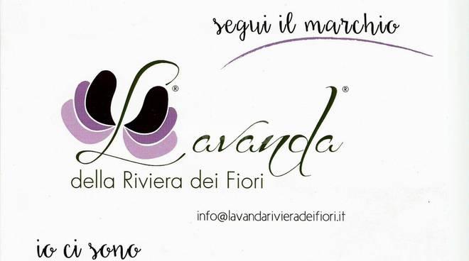 I Comuni di Castel Vittorio e Caprauna entrano a far parte del Territorio della Lavanda della Riviera dei Fiori