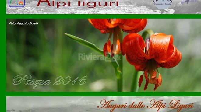 riviera24 - Pasqua nel Parco Alpi Liguri