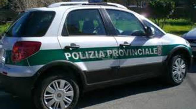 riviera24 - polizia provinciale