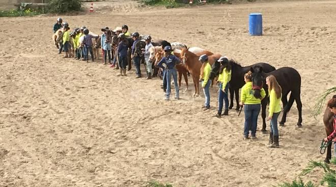 riviera24 - Campionato Interregionale Tosco ligure wsga pony