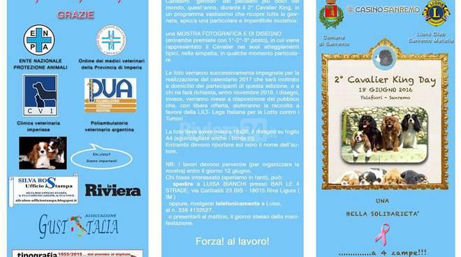 Riviera24 - 2 Cavalier King Riviera dei Fiori