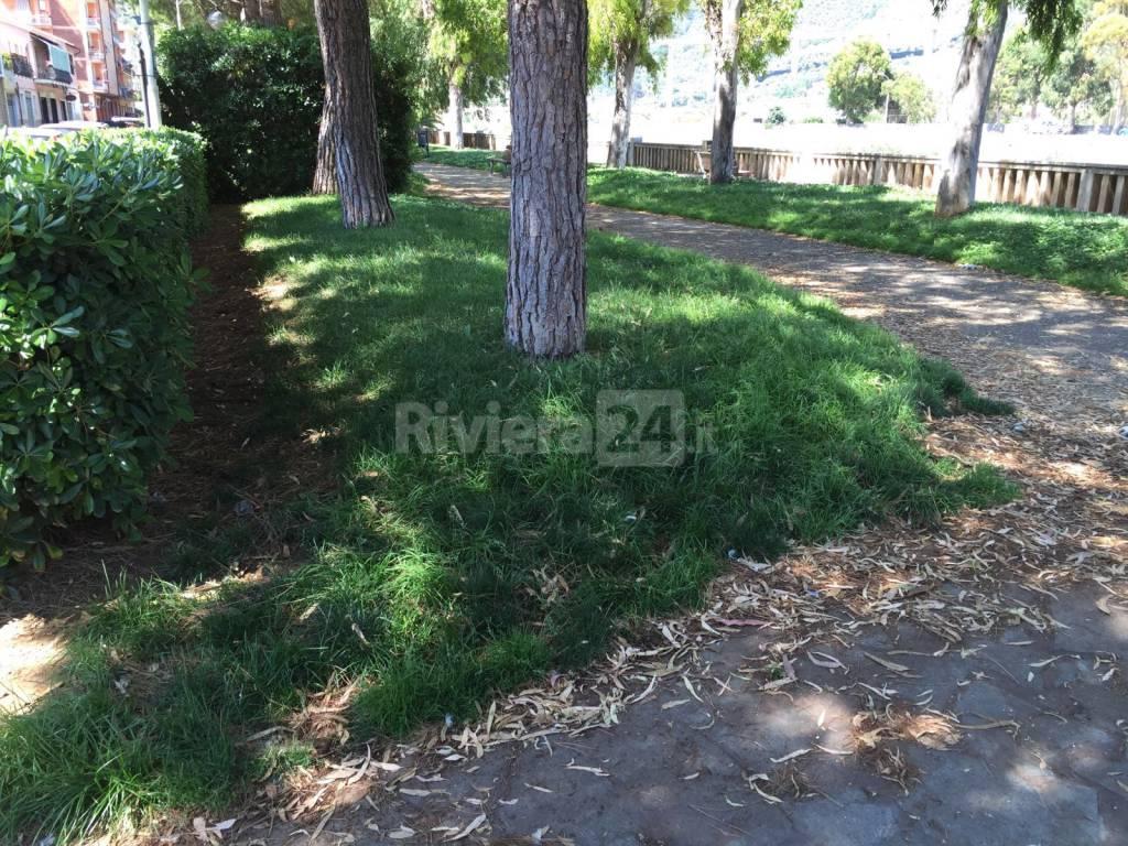 riviera24 - Sporcizia e degrado a Taggia