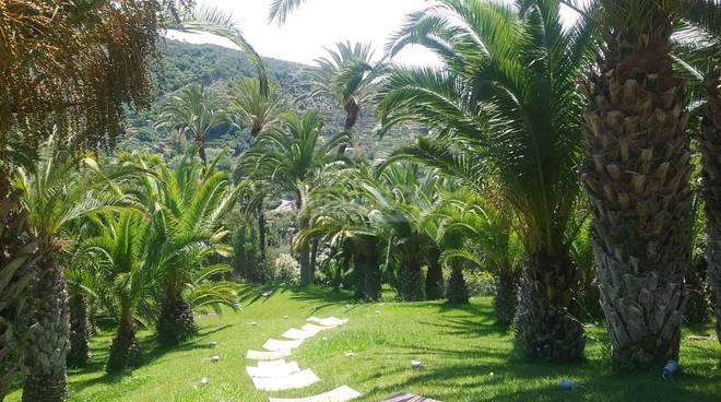 riviera24 - il giardino di irene brin