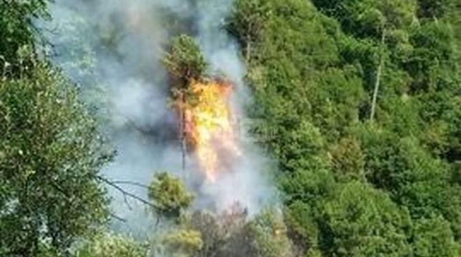 riviera 24 - incendio boschivo