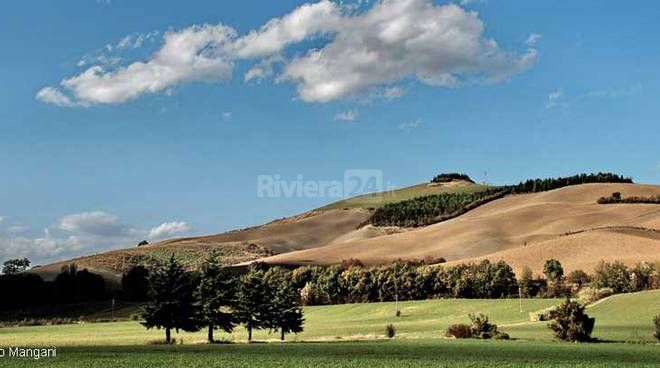 riviera24 - Campagna di Marche