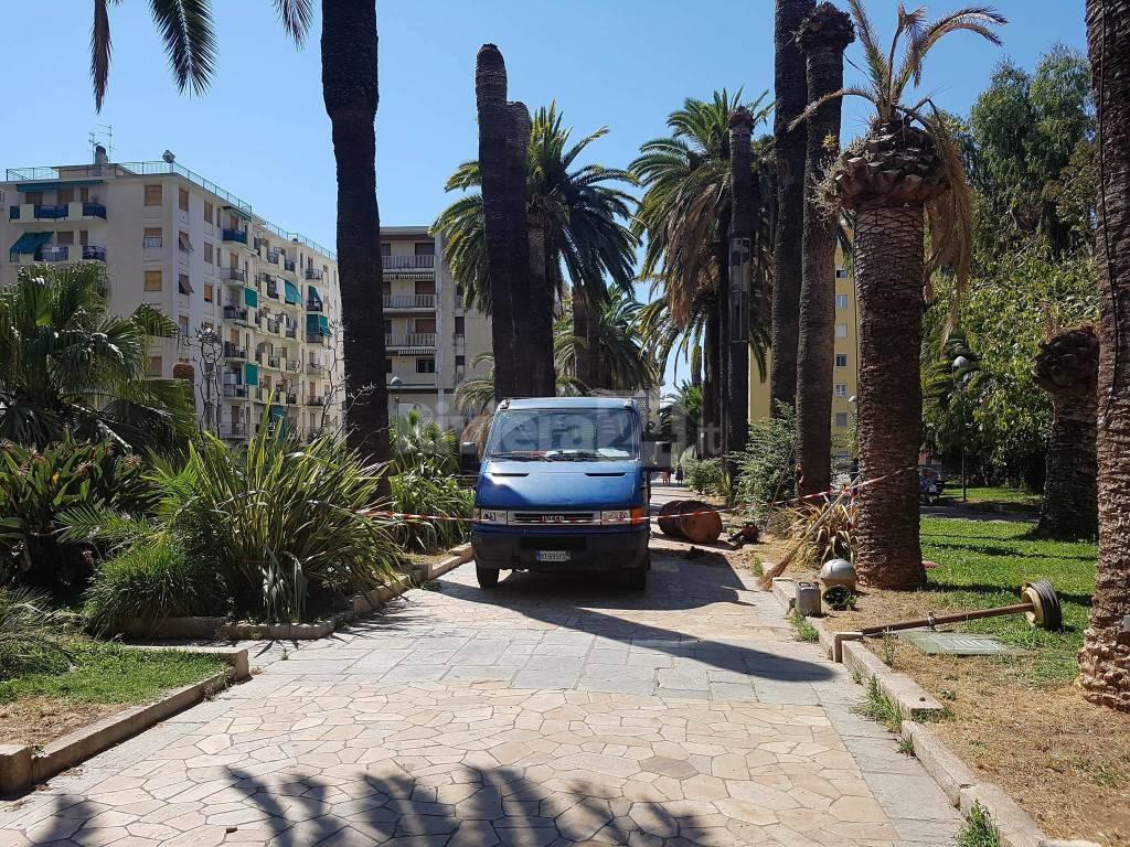 riviera24 - viale delle palme arma di taggia