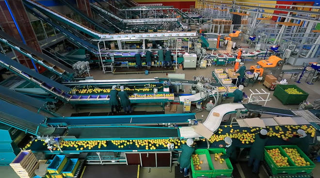 riviera24 - Industria alimentare