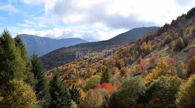 riviera24 - montagna