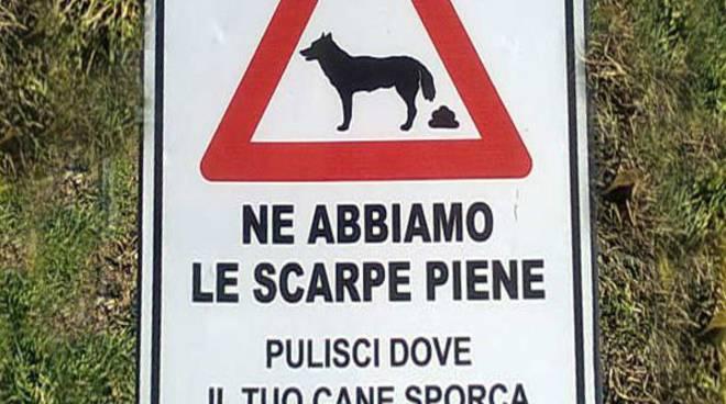 riviera24 - linea dura contro gli incivili con il cane