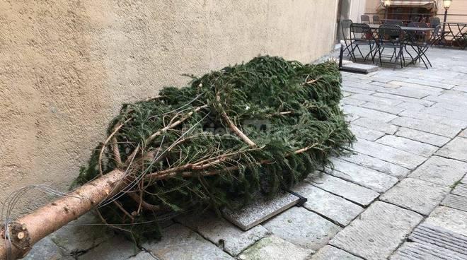 Bordighera albero di Natale