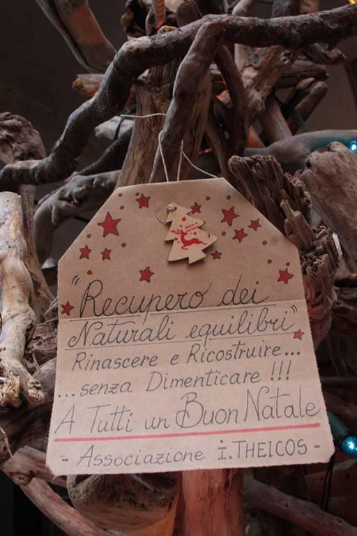 Riviera24 - Pieve di Teco, albero di Natale