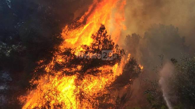 riviera24 - Imperia, incendi ancora in atto in valle Arroscia