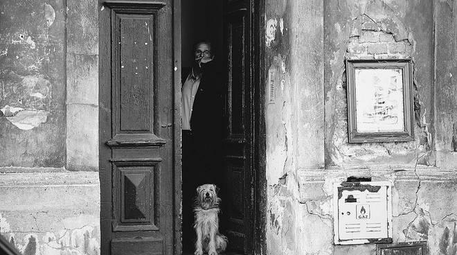 Scappare dalla porta di casa e abbaiare al suono del - Porta che sbatte suono ...