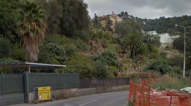 riviera24 - strada di collegamento tra castellaro taggia