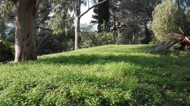 riviera24 - Parco del Novaro