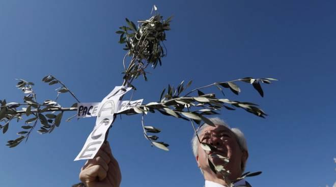 Papa Francesco, Domenica delle Palme (foto Rainews.it)