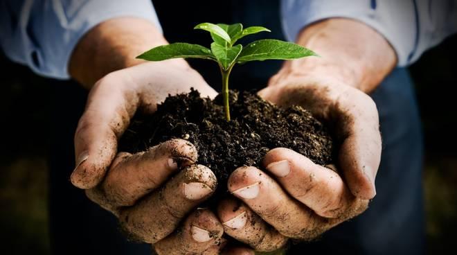 riviera24 - Agricoltura biodinamica