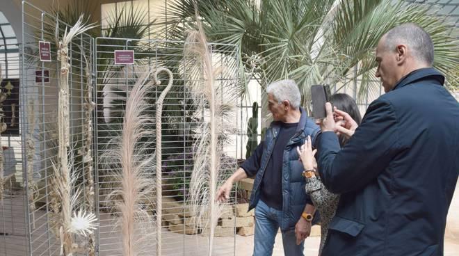 """riviera24 - Sanremo, tour operator da tutta Europa per """"Jardival"""""""