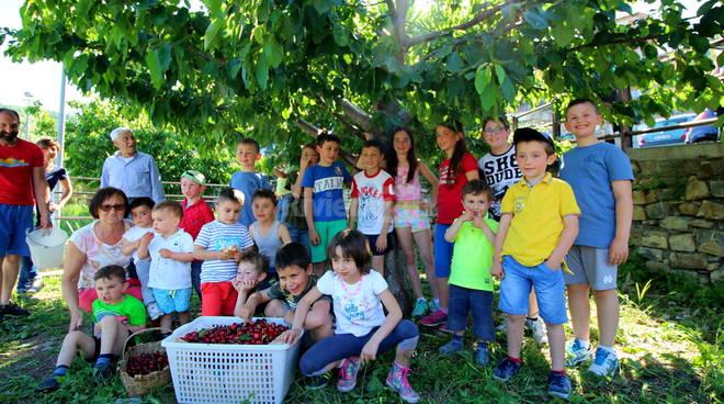 Riviera24 - Festa delle ciliegie Villa Viani