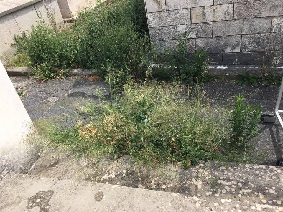 cimitero porto maurizio