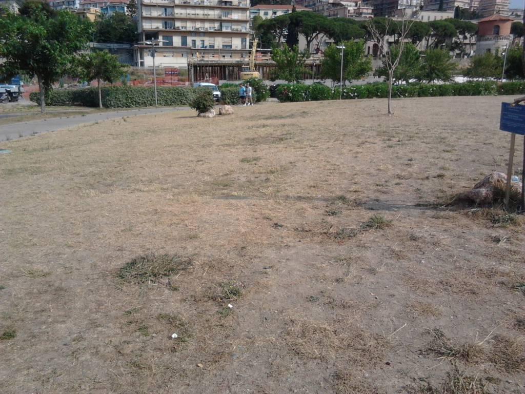 riviera24 - parco urbano imperia siccità