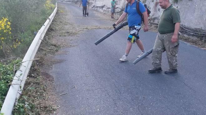 riviera24 - Ripulita dai volontari la provinciale a Pontedassio