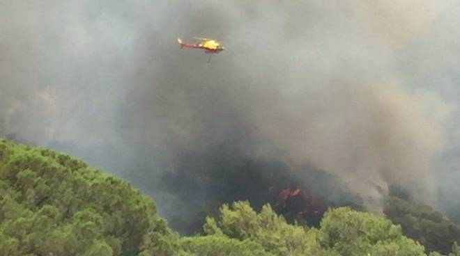 incendio nizza