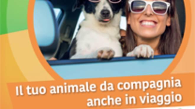 riviera24 - Campagna di sensibilizzazione contro l'abbandono degli animali